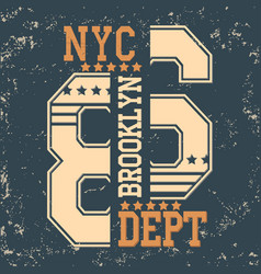 new york brooklyn vector image