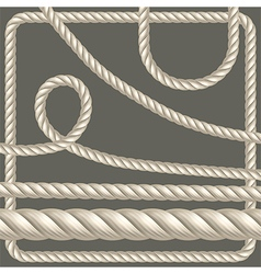 Twisted rope of different shapes vector