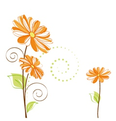 Springtime colorful daisy flower vector