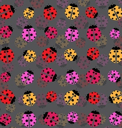 Beetles background vector image