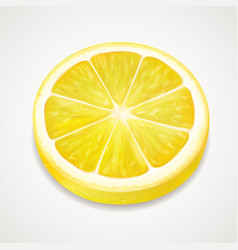 lemon juicy slice realistic fruit vector image vector image