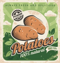 Vintage poster template for potato farm vector image