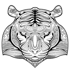 Hand drawn tiger coloring page vector image