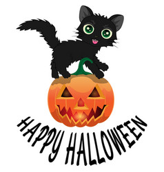 black cat and pumpkin for halloween4 vector image