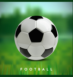 soccer or football ball on green background vector image vector image