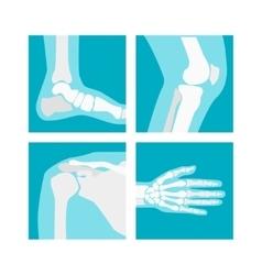 Cartoon human joints set vector