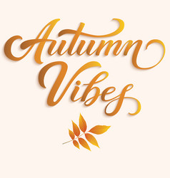 hand drawn lettering - autumn vibes with autumn vector image