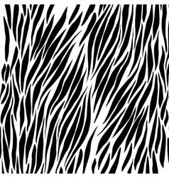 Black and white zebra background vector image vector image
