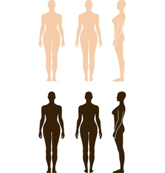 naked standing woman vector image