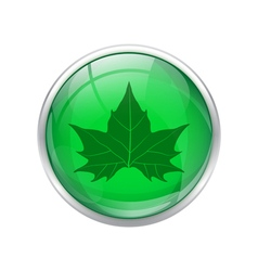 Green leaf button vector