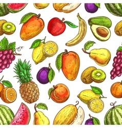 Fruit seamless pattern for food and drink design vector image
