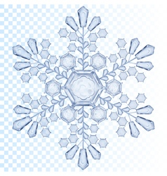 Transparent snowflake vector