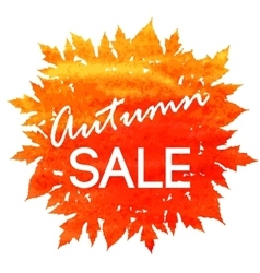 Autumn discount fall leaves vector image vector image