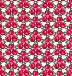 Ribbon rose cluster pattern vector