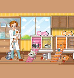 Vet and cats in clinic vector
