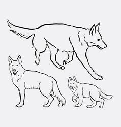 German shepherd pet dog animal sketch vector