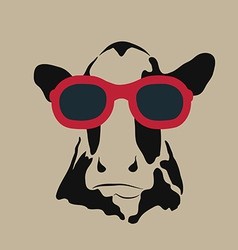 Cow glasses vector