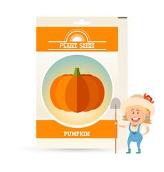 pack of pumpkin seeds vector image