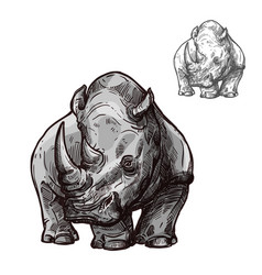 rhino animal isolated sketch of african rhinoceros vector image vector image
