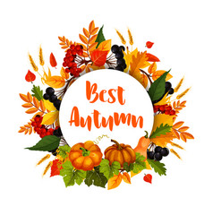 Autumn poster of leaf fall and pumpkin harvest vector