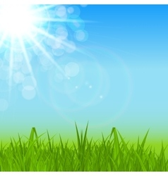 Natural sunny spring summer background with blue vector