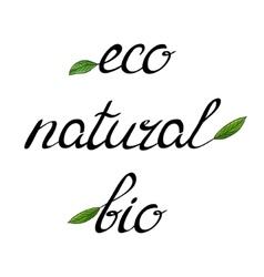 Handwritten words eco bio natural vector
