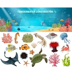 Sea life constructor isolated icons set vector