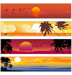 Tropical summer banner vector