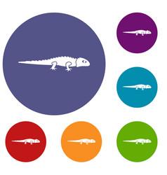 Iguana icons set vector