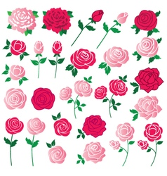 Rose clipart vector