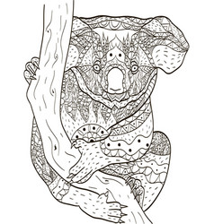 koala bear on a branch coloring book for vector image
