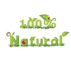 Natural banner with decorated letters vector