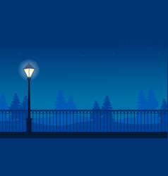 beauty landscape park with street lamp at night vector image vector image