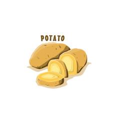 logo icon design potato farm vector image