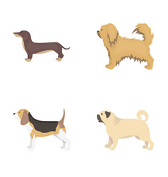 Pikinise dachshund pug peggy dog breeds set vector