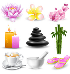 Spa objects set vector