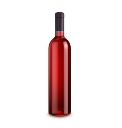 Bottle of wine isolated on white background vector
