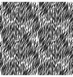 Black and white zebra background vector
