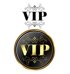 Vip card exclusive vector