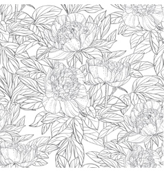 Seamless pattern of flowers peonies black and vector