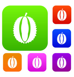 Durian set collection vector