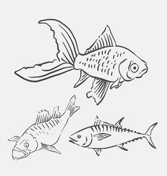 fish animal sketch vector image