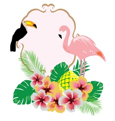 flamingo toucan vector image