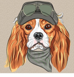 Hipster red dog cavalier king charles spaniel vector
