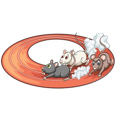 Three rats racing vector image vector image