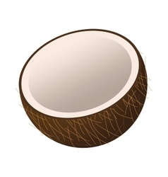 Half coconut icon vector