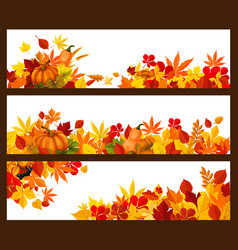 autumn fall leaves banners set vector image vector image
