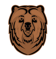 Bear head mascot for a sports team logo vector