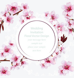 Cherry blossom round card frame spring delicate vector