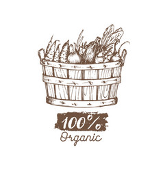 organic vegetables logo farm eco products vector image